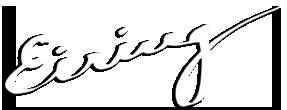 Eiring logo